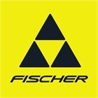 Новое поступление горных лыж Fischer сезона 19-20